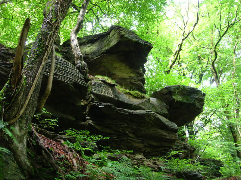 Outcrops of rocks like this one will be great to teach the school children about the earth's geological past.