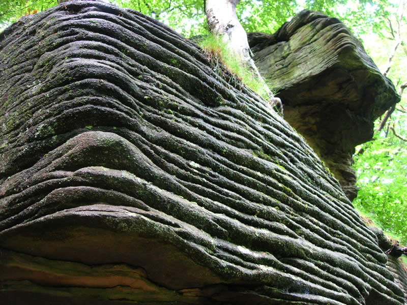 Close up of the stratification occurring in a rock formation in the woodlands of Edwardsville Primary School.
