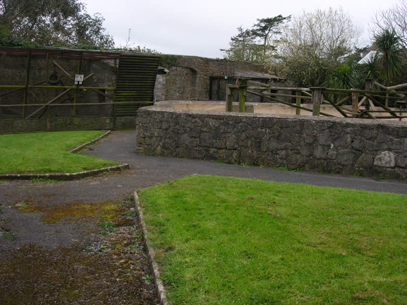 A section of the walled garden before any work has started at Manor House Wildlife Park (Anna Ryder Richardson's and Colin MacDougal's Zoo) which incudes the Meercat enclosure.