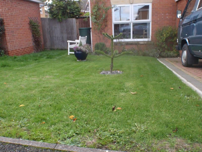 The Cafédirect competition winning front garden which will have an edible landscaping makeover.