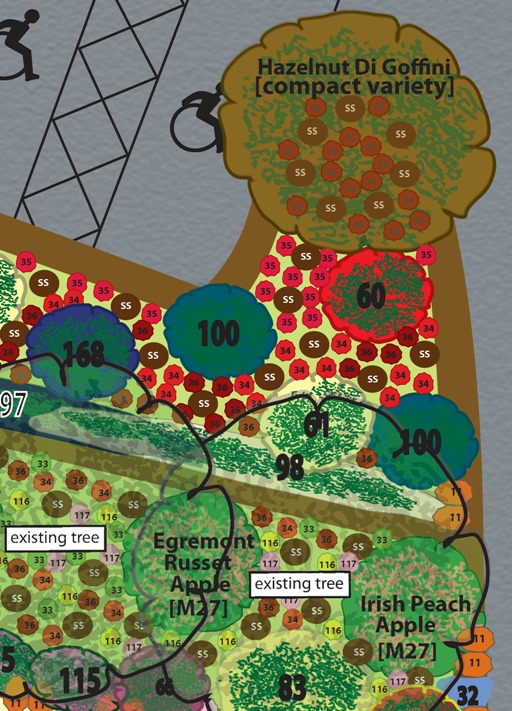 Chapter Community Garden. Edible permaculture garden at Chapter Arts Centre, Cardiff, Wales.