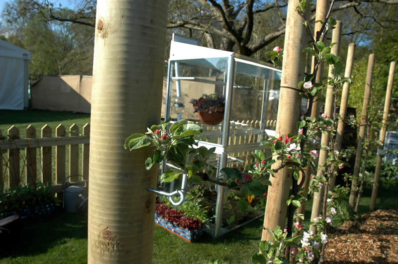 Function and form combine beautifully in this permaculture garden created for the RHS flower show. Foregrounded here is an espalier apple tree while in the background is a solar powered greenhouse.