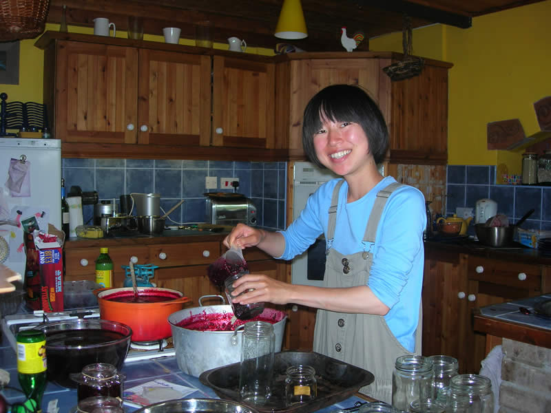 Japanese Wwoofer Shiori, making blackberry jam from the berries she had picked